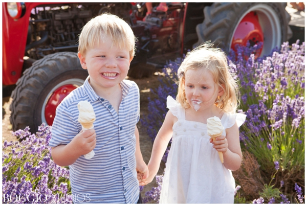 Ice cream at Mayfield Lavender Fields