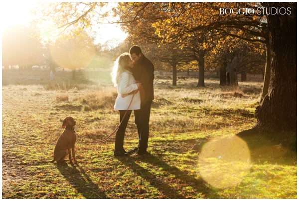 Pregnant couple and dog in sunshine