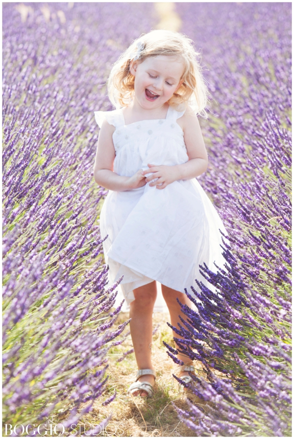lavender field location for a photoshoot