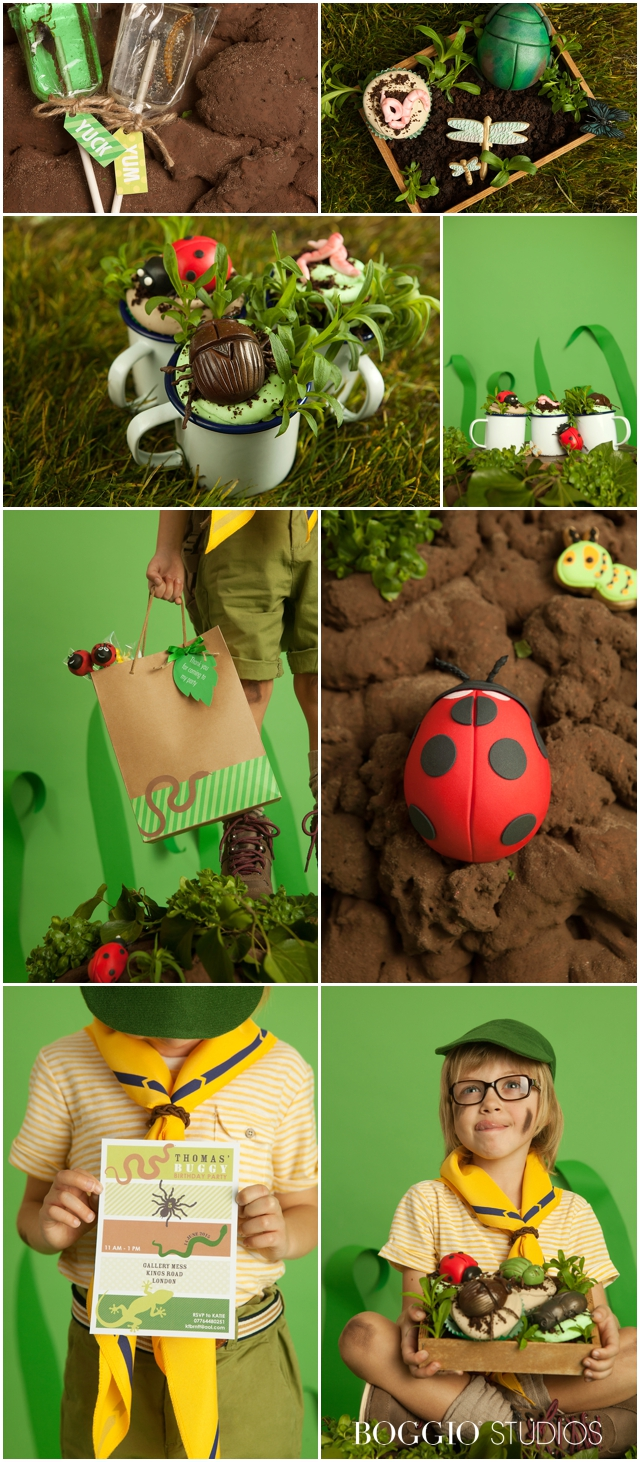 creative bug and insect cakes